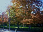 Retiro Park, Madrid Autumn ´09
